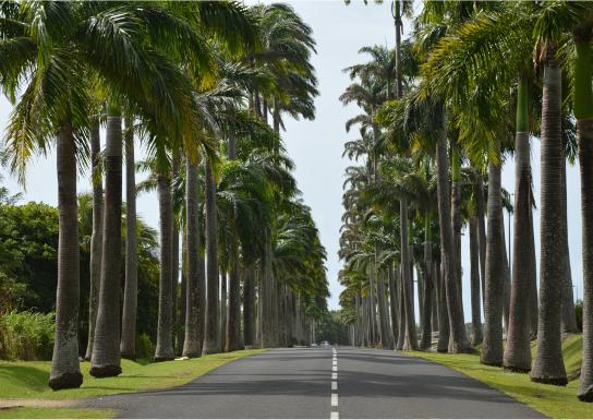 Dates à retenir Guadeloupe